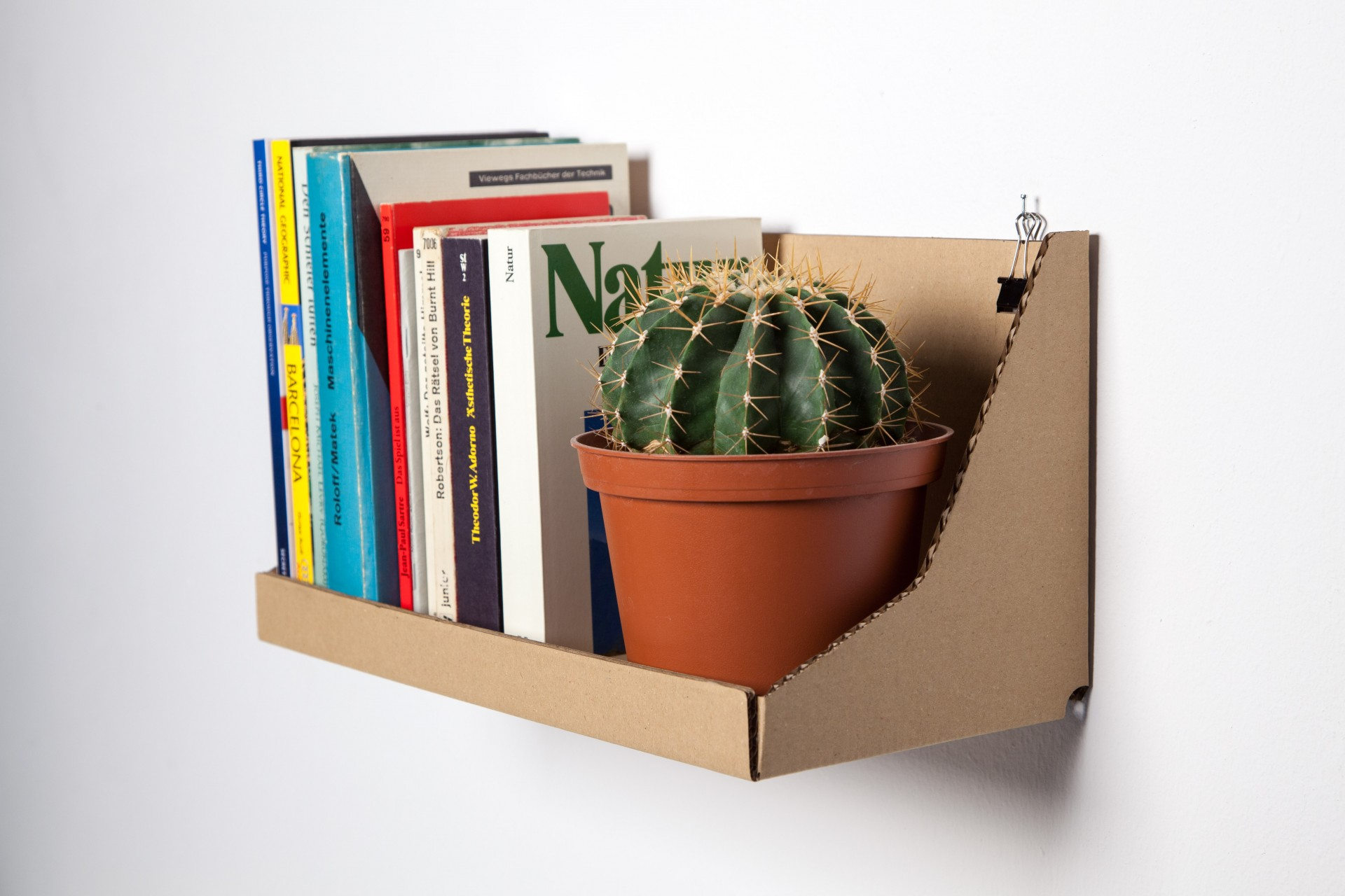 Alejandro  Carboard Shelf